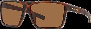 Desert Tortoise - Brown